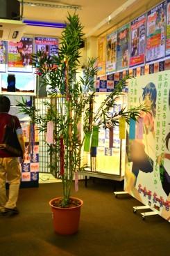 Festival Tanabata - Monogatari Series - 07