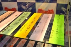 Festival Tanabata - Monogatari Series - 20