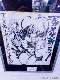 Akame Ga Kill - Gamers Akihabara - 57